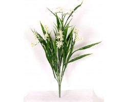NARCISSUS Bush Col. Flw. White Cm 44 - UVR -