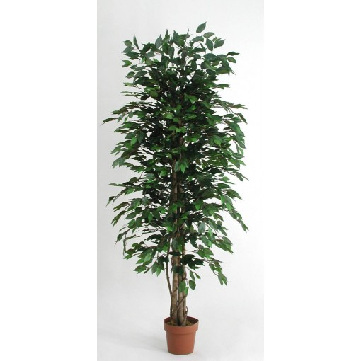 Ficus Artificiale Low Cost Verde disponibile da cm. 125 a cm. 200
