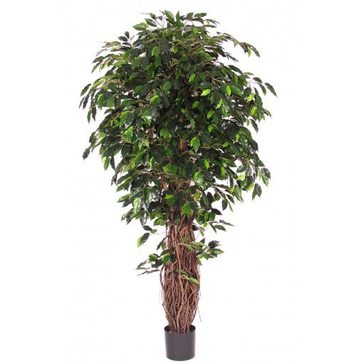 Ficus Artificiale Verde, tronco Big Liana h. 195 cm.