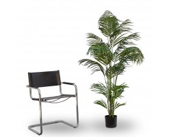 Areca Artificiale Tree, h. 150 cm.