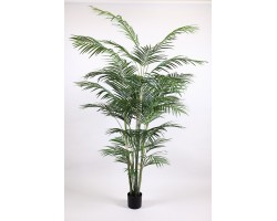 Areca Artificiale Tree, h. 240 cm.
