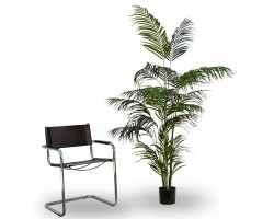 Areca Artificiale Tree, h. 180 cm.