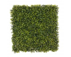Siepe Artificiale BOXWOOD Aureovariegata cm 50x50 in mattonelle