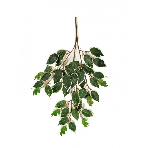 Ficus Artificiale Normal Variegato, ramo con 42 foglie