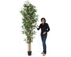 Bambu Artificiale H. 250 - 5/6 Canne Naturali