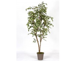 Ficus Artificiale Hawaiian Variegato New Garden - in varie Altezze da cm. 150 a cm. 210