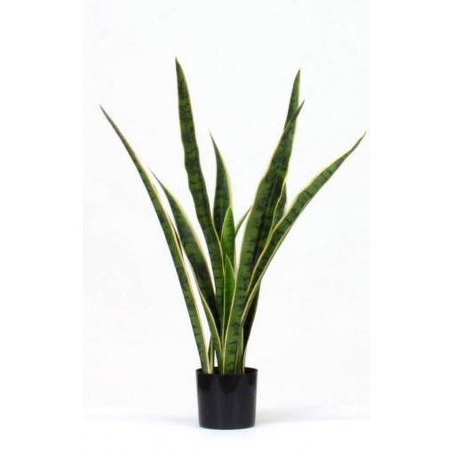 Sanseveria Artificiale Small Variegata H. 78 Cm.