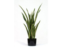 Sanseveria Artificiale Big Variegata H. Cm. 110