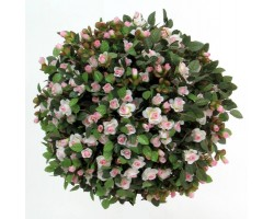 Rose Artificiali mini white/pink, sfera in vari diametri da 40 a 65 cm.