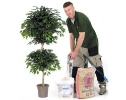 Ficus Artificiale Normal Foglia Verde - 2 Ball