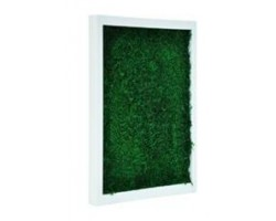Quadro NATURE FLATMOSS Cornice MDF Bianca, Frames in MDF White